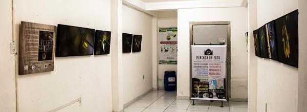 Exposição no Mercado Cultural de Petrópolis